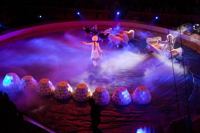 festival du cirque, festival de cirque, cirque de massy, artistes de cirque, spectacle de cirque, festival international du cirque de massy